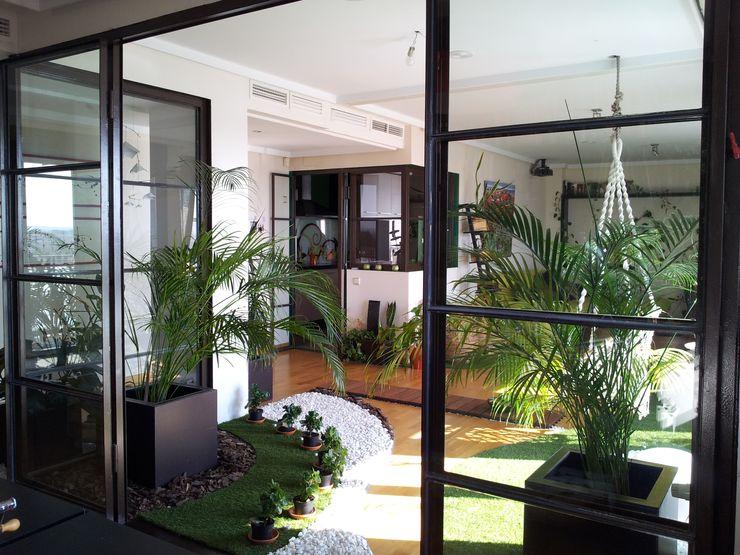 Reforma Viv Monaco torradoarquitectura Balkon, Beranda & Teras Modern