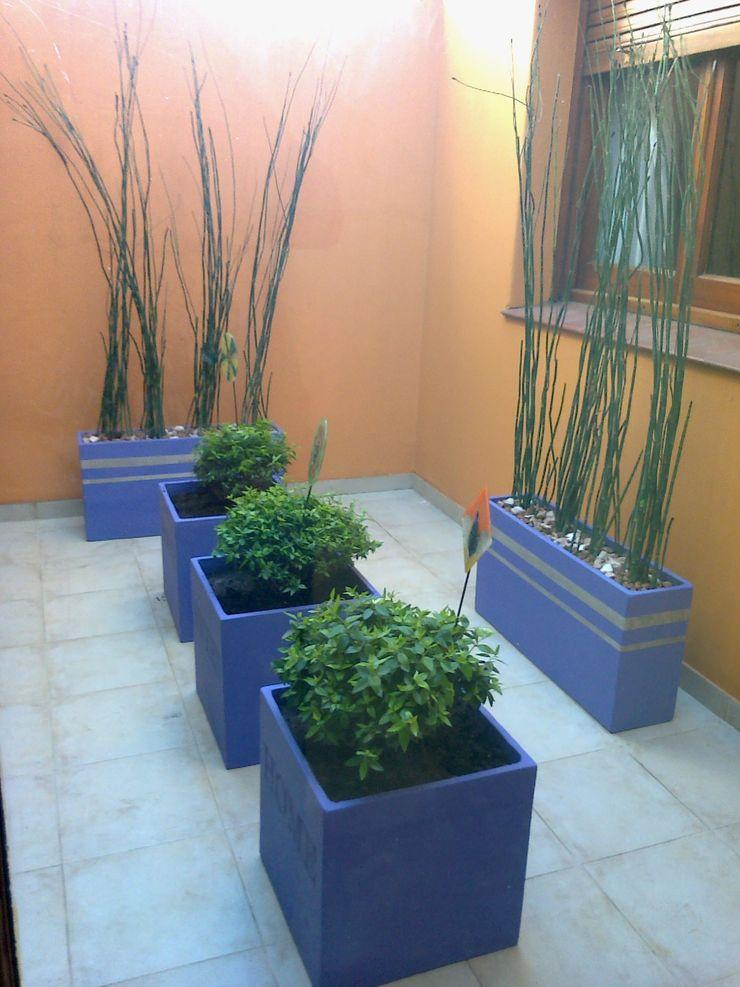 LAS MARIAS casa & jardin Modern Conservatory