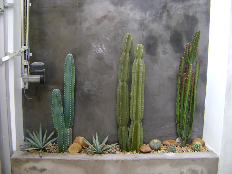 MC3 Arquitetura . Paisagismo . Interiores Jardines de estilo mediterráneo