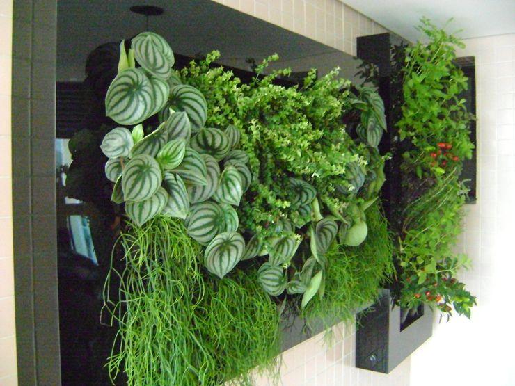 MC3 Arquitetura . Paisagismo . Interiores Jardin moderne