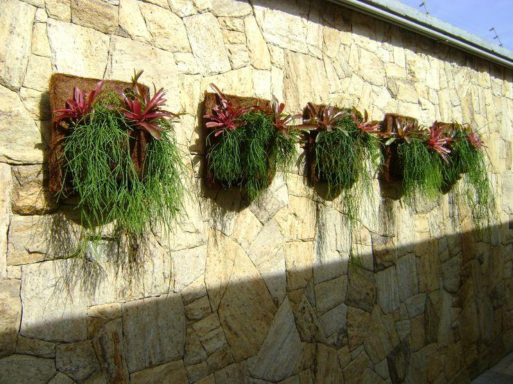MC3 Arquitetura . Paisagismo . Interiores Tropical style garden