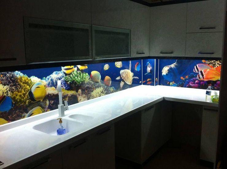 Internova Stretch Ceiling & 3d Flooring Tropical style kitchen