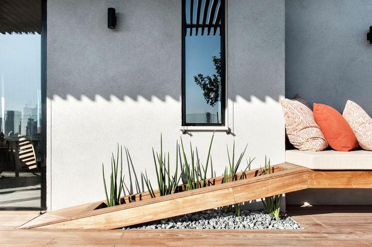 toledano + architects Balcones y terrazas de estilo minimalista