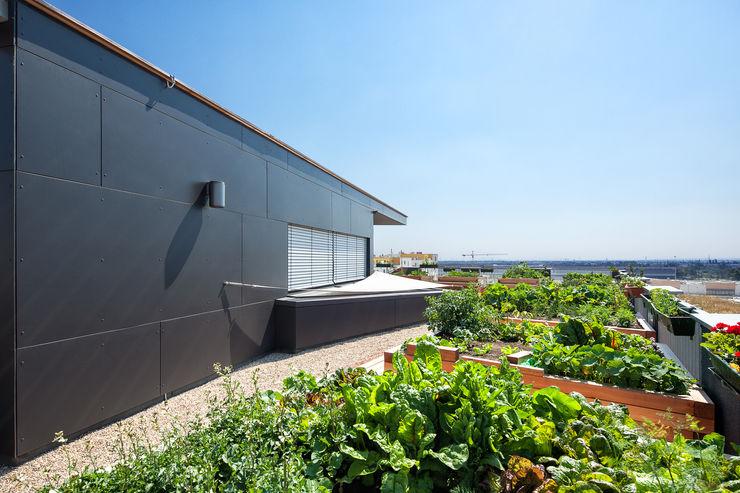 Co-Housing Jaspern pos sustainable architecture Moderner Garten