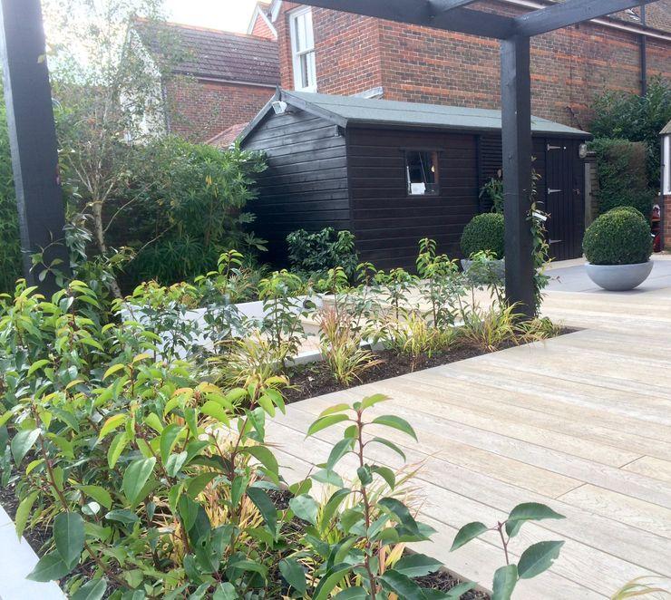 Small garden extension homify 庭院