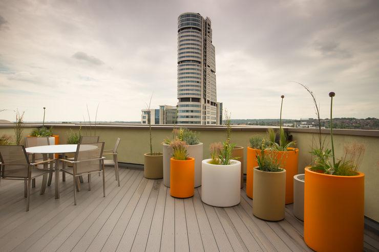 Vibrant Roof Terrace Yorkshire Gardens Balcones y terrazas modernos