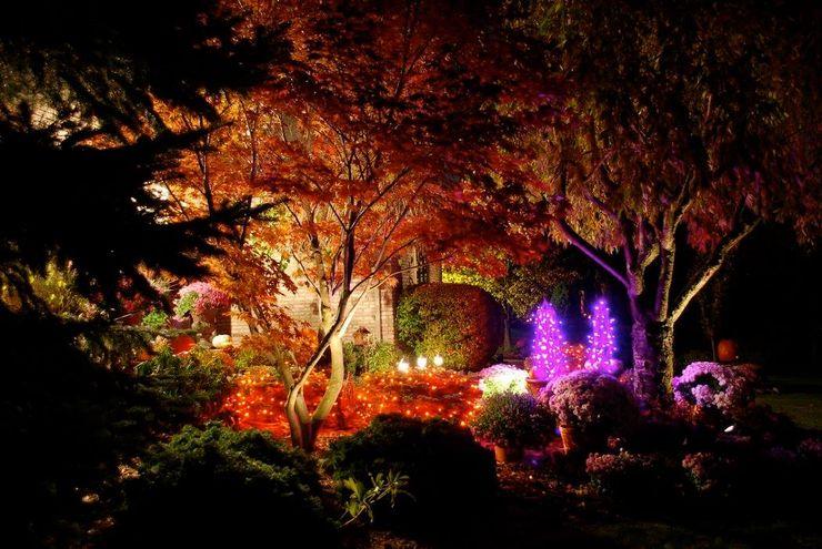 Akasha espacios iluminados Classic style garden