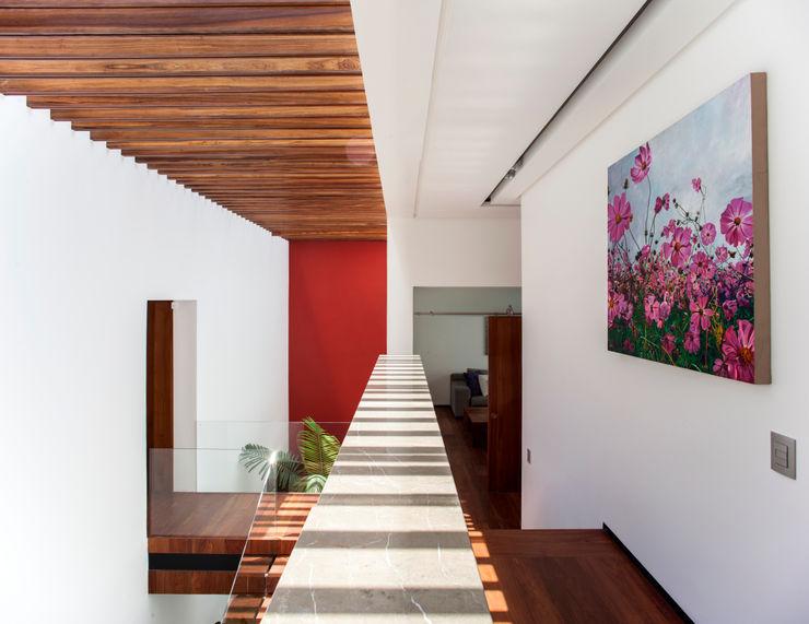 Almazan y Arquitectos Asociados オリジナルスタイルの 玄関&廊下&階段 コンクリート 白色