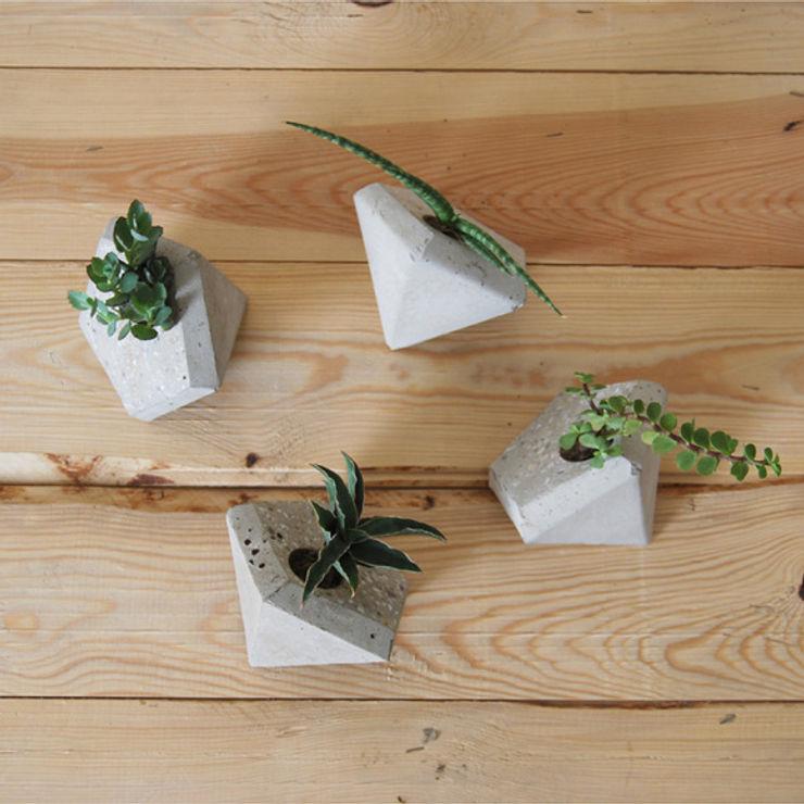 Macetas Edro disponibles en Greenella Greenella Salas/RecibidoresAccesorios y decoración