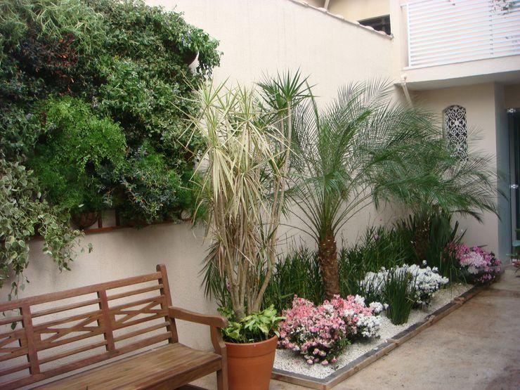 Greice Peralta Jardines de estilo tropical