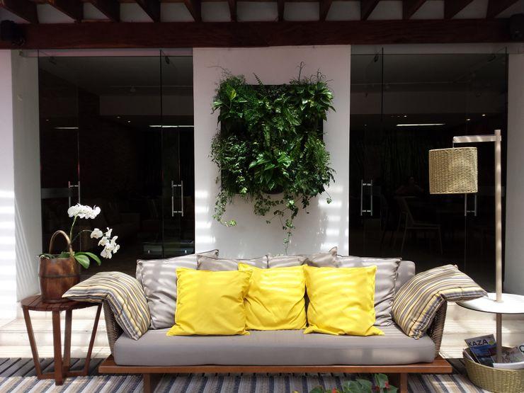 Bruno Carettoni Arquitetura Paisagística & Ecodesign Tropical style garden