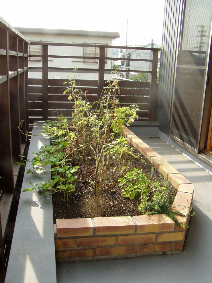 大森建築設計室 Балкон и терраса в классическом стиле