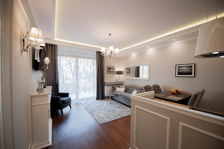 AgiDesign Classic style living room Grey