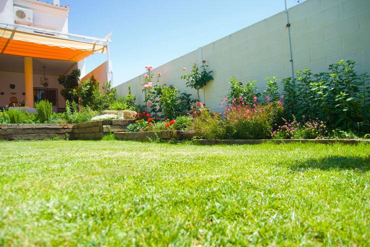 Landscapers Mediterranean style garden