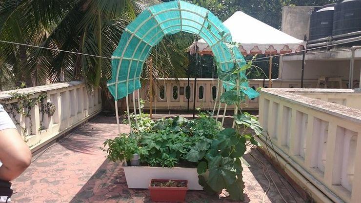 SmartGarden GreenTech Life Modern garden