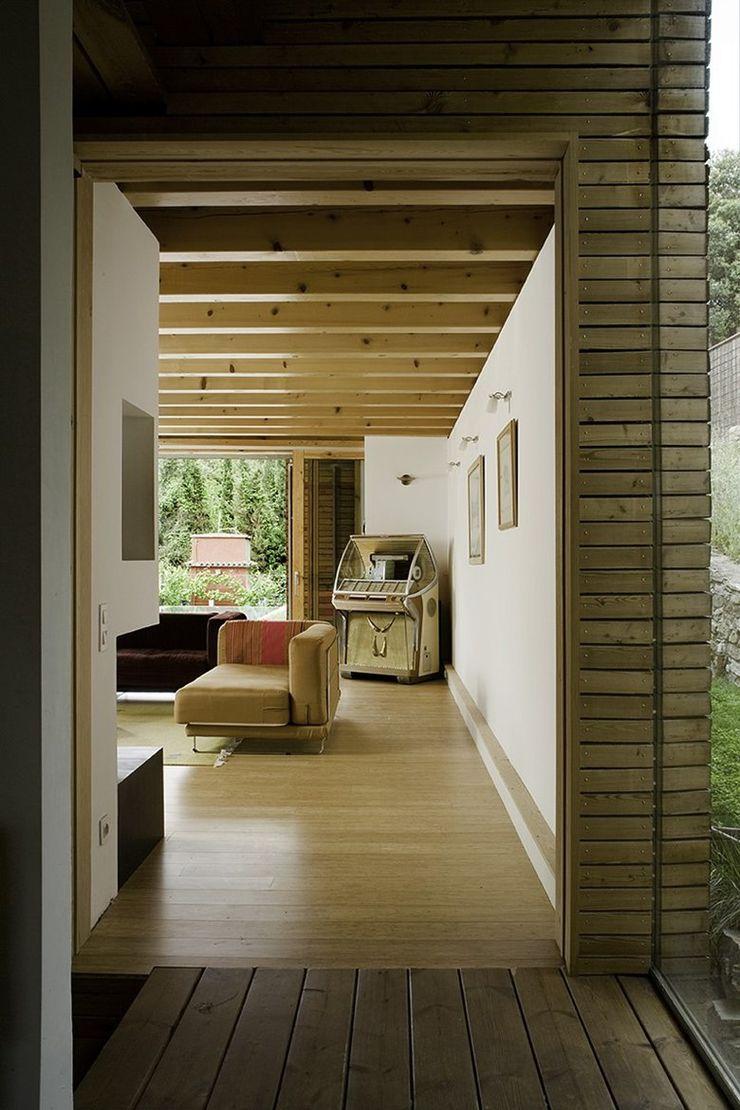 NOEM Modern Living Room