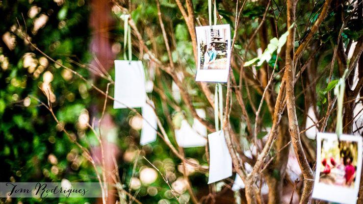 Árvore de Fotos Cena De.Coração JardimAcessórios e decoração