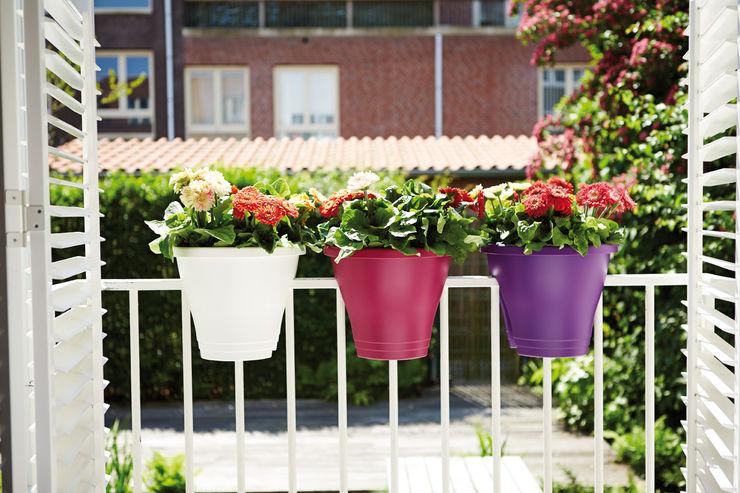 Corsica Flower Bridge 30 cms Elho México Balcones y terrazasPlantas y flores Plástico Multicolor