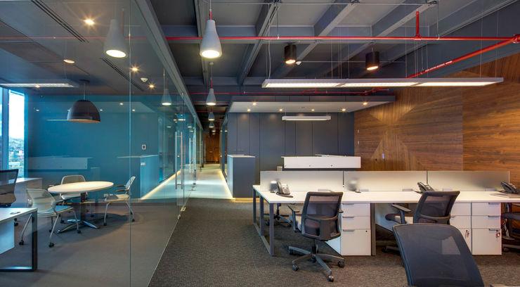 RIMA Arquitectura Estudios y despachos de estilo moderno