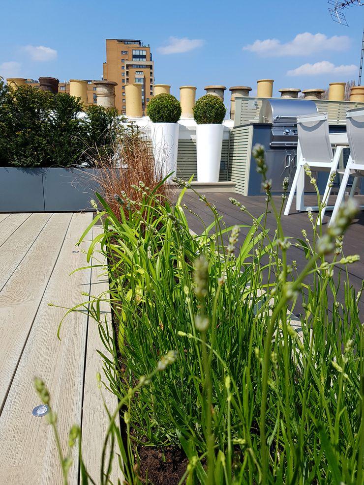 South Kensington roof terrace Paul Newman Landscapes Modern balcony, veranda & terrace Wood-Plastic Composite Grey
