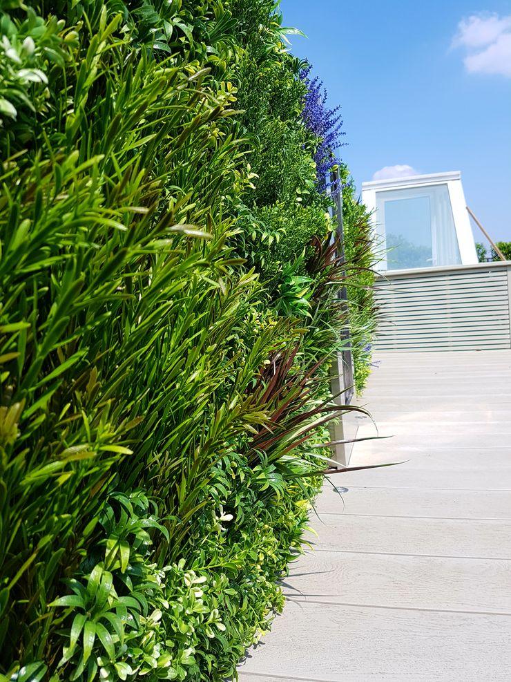 Artificial green wall Paul Newman Landscapes Modern balcony, veranda & terrace