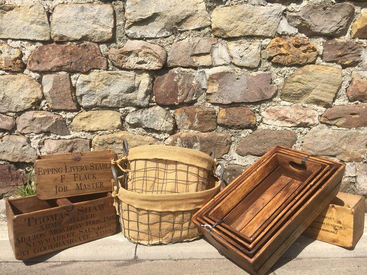 Basket Mister Toad KitchenStorage