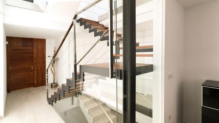 arqubo arquitectos الممر الحديث، المدخل و الدرج خشب نقي Wood effect