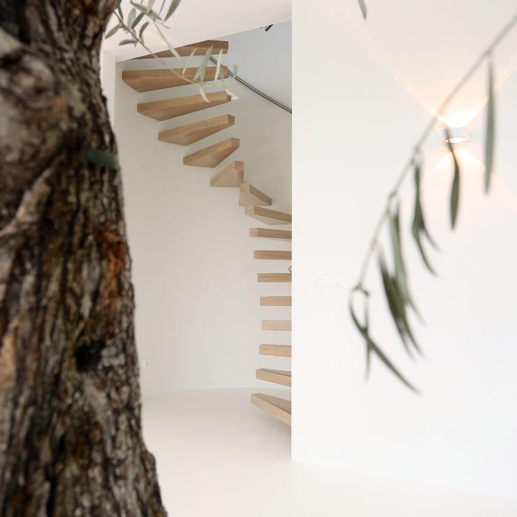 EeStairs   Stairs and balustrades Modern corridor, hallway & stairs Wood