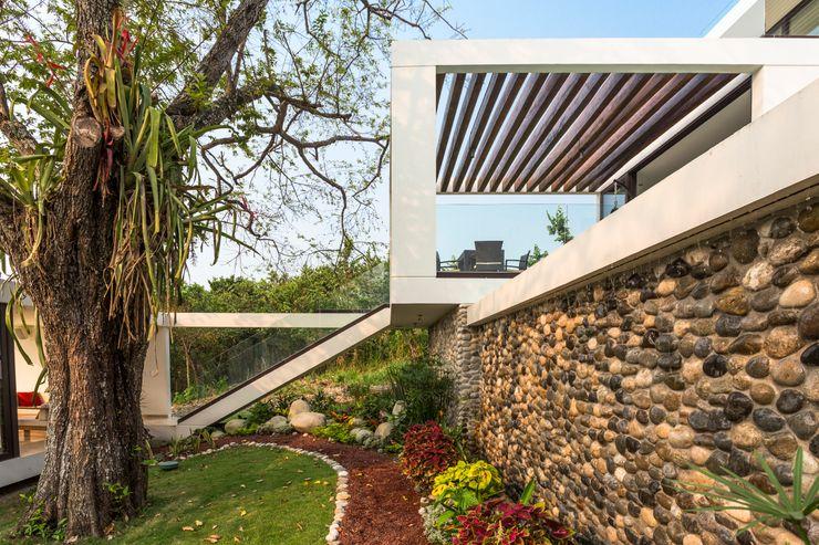 Yucatan Green Design Minimalist style garden