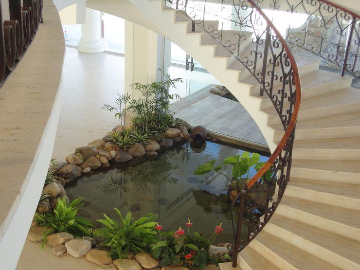 Projeto Lago Chandelier Agua Viva Lagos e Paisagismo Jardins tropicais