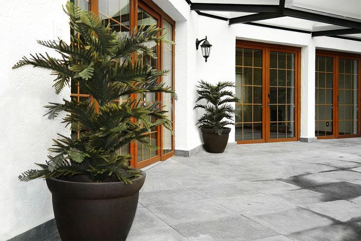 Ranka Follaje Sintético 玄關、走廊與階梯配件與裝飾品