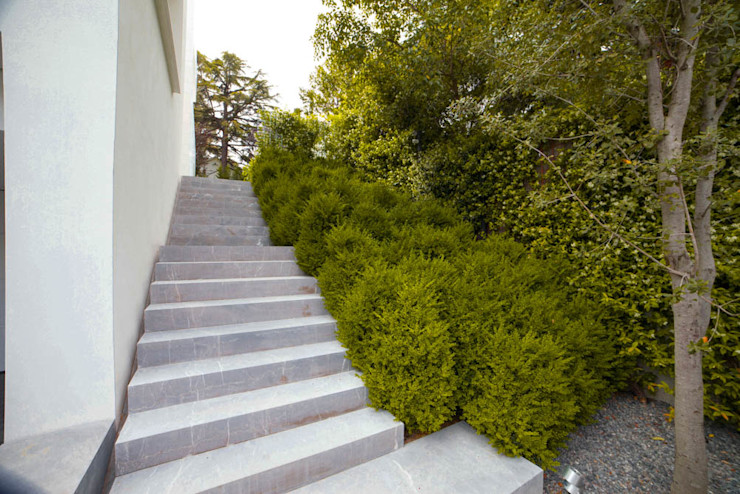Garden in Madrid Planta Paisajistas Jardines modernos