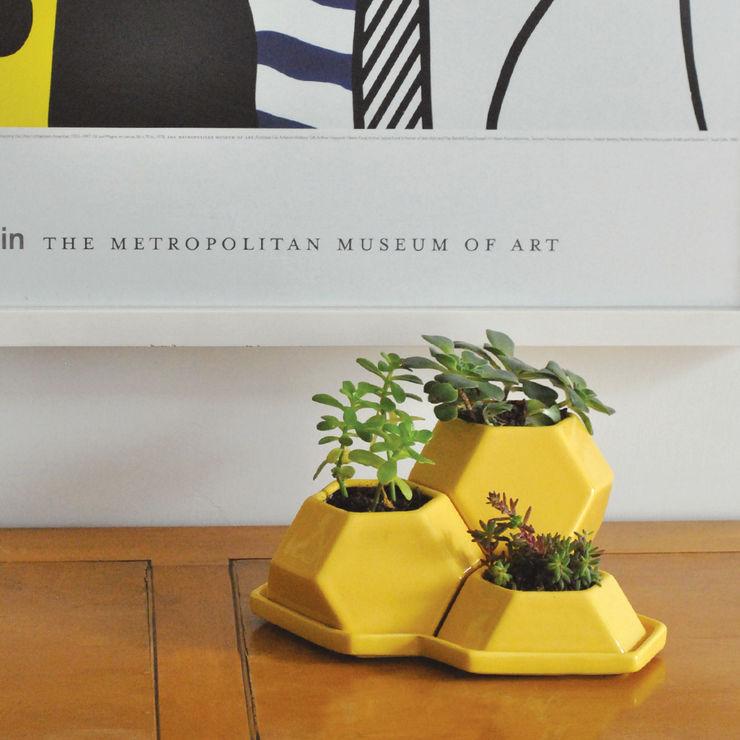 Bizcocho 家居用品植物與配件 陶器 Yellow