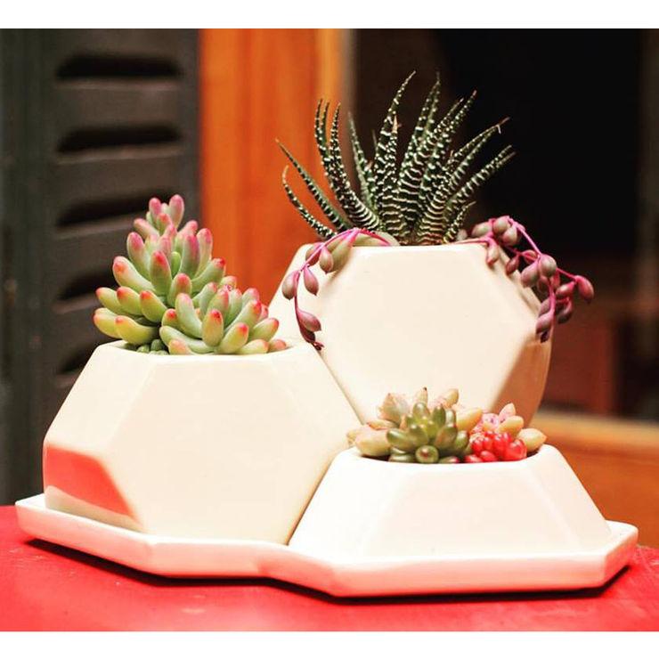Bizcocho 家居用品植物與配件 陶器 Beige