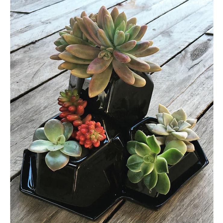 Bizcocho 家居用品植物與配件 陶器 Black