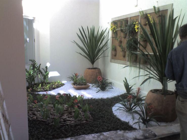 Borges Arquitetura & Paisagismo JardinesPlantas y flores