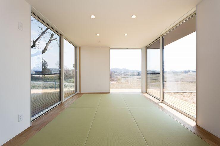 TKD-ARCHITECT Modern houses