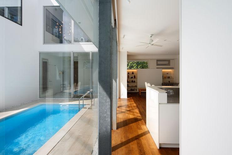 「水と光のある暮らし」吉祥寺のプールハウス LDKとプール TAMAI ATELIER モダンな 家