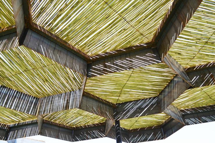 TABB Architecture Jardines modernos: Ideas, imágenes y decoración
