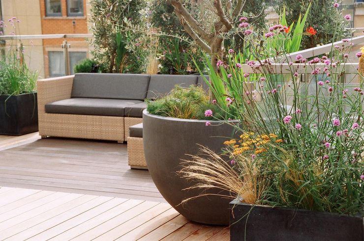Roof Terrace Garden in Nottinghill, London GreenlinesDesign Ltd Modern balcony, veranda & terrace