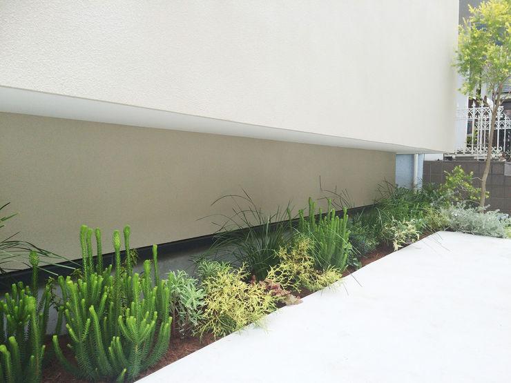 (有)ハートランド Modern Garden Green