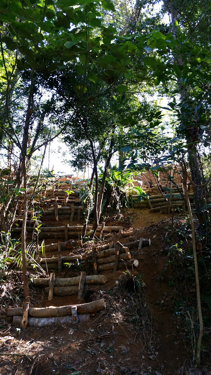 艸木/SOUMOKU Eclectic style garden Wood Green