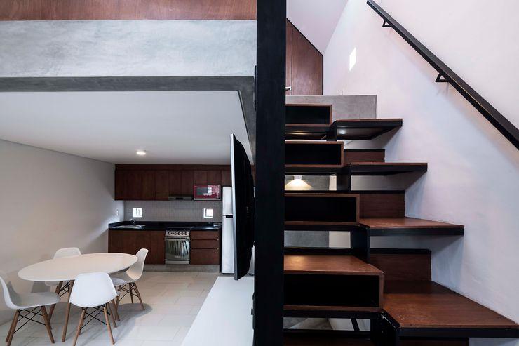 DMP Arquitectura 現代風玄關、走廊與階梯