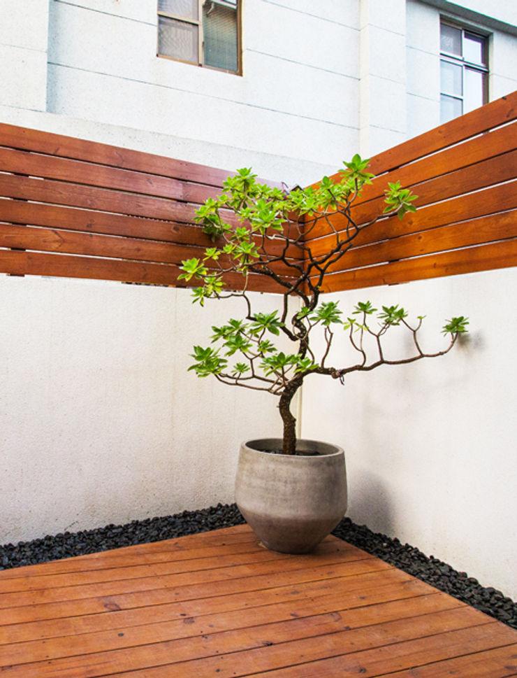 直譯空間設計有限公司 Modern balcony, veranda & terrace Wood effect