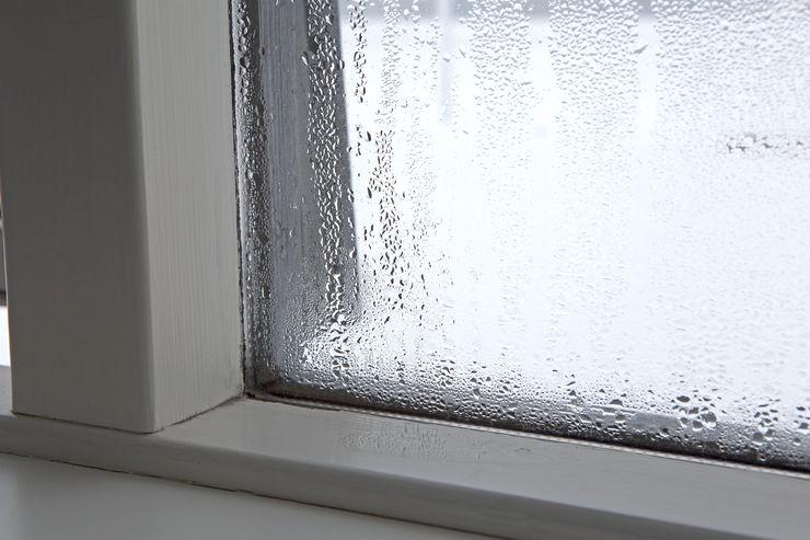 homify Windows & doors Windows