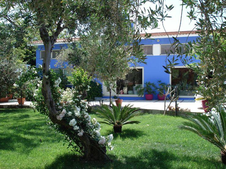 MEF Architect Hoteles Concreto Azul