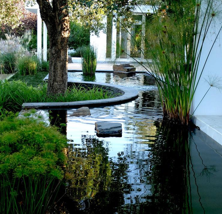 Water mirror Atelier Jardins do Sul 庭院