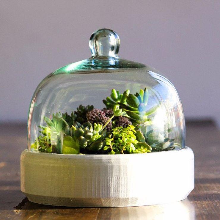 Bell Jar Marga HouseholdPlants & accessories
