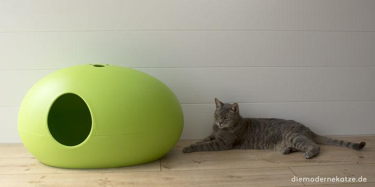 DIE MODERNE KATZE ® Corridor, hallway & stairs Accessories & decoration Synthetic Green