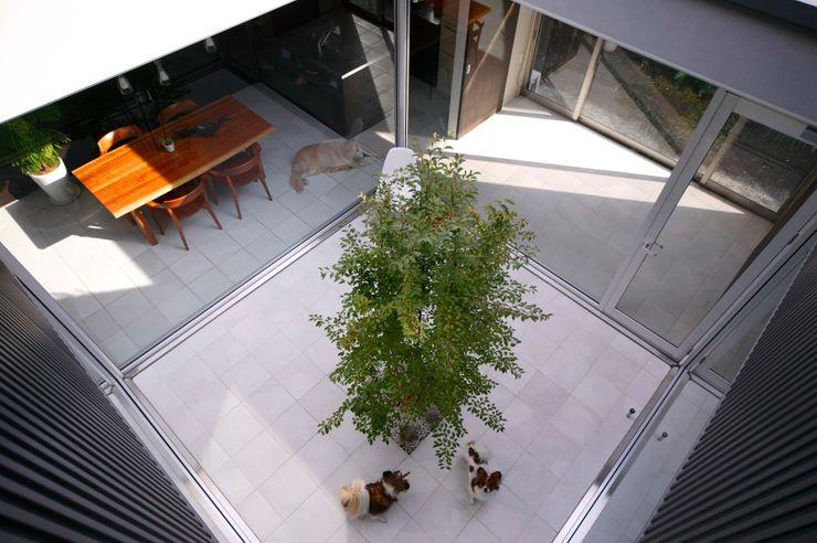 藤井伸介建築設計室 Jardines de estilo moderno